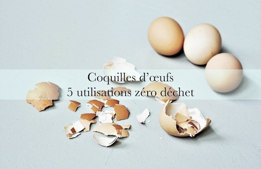 Coquilles d'oeufs : 5 utilisations